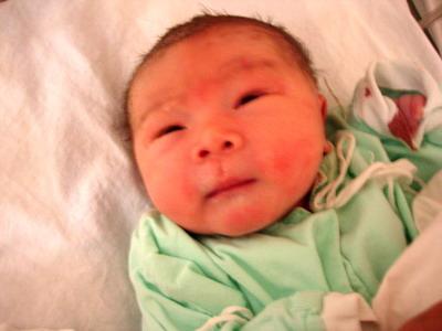 贝贝出生的照片